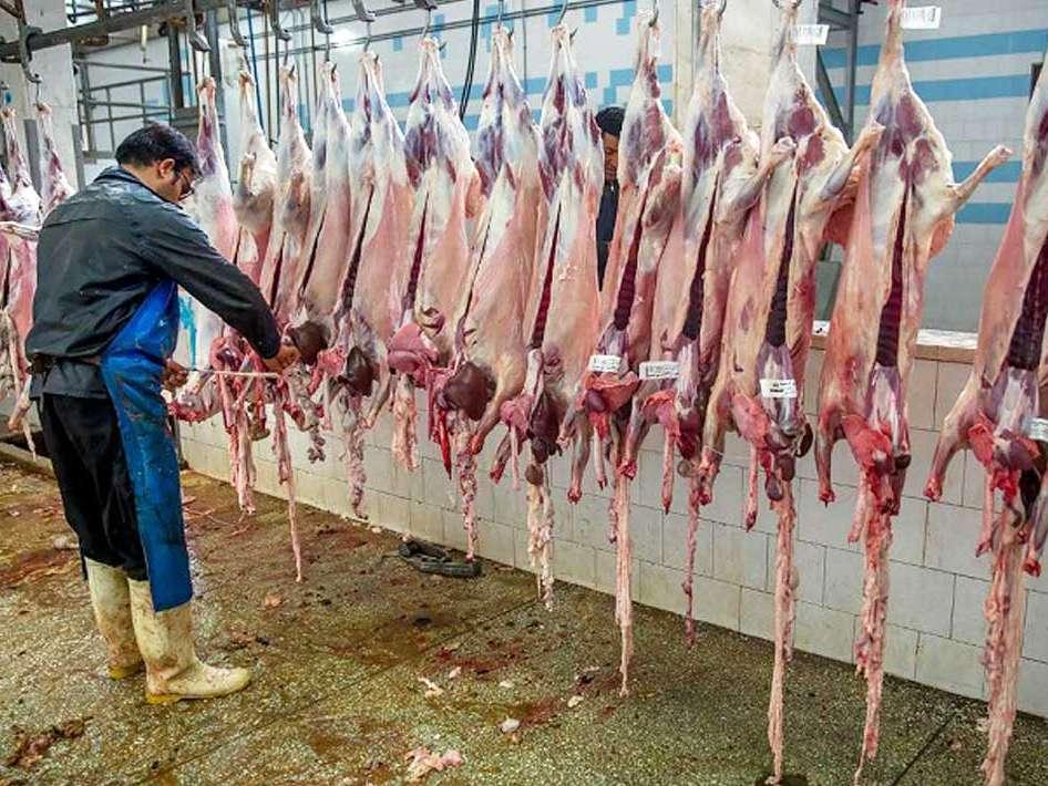 عرضه گوشت خارج از چرخه کشتارگاه ممنوع است