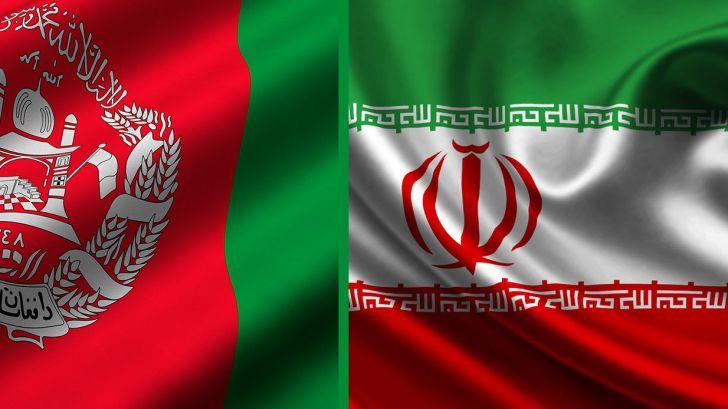 صنعت دام و طیور نقطه افزایش همکاری ایران وافغانستان