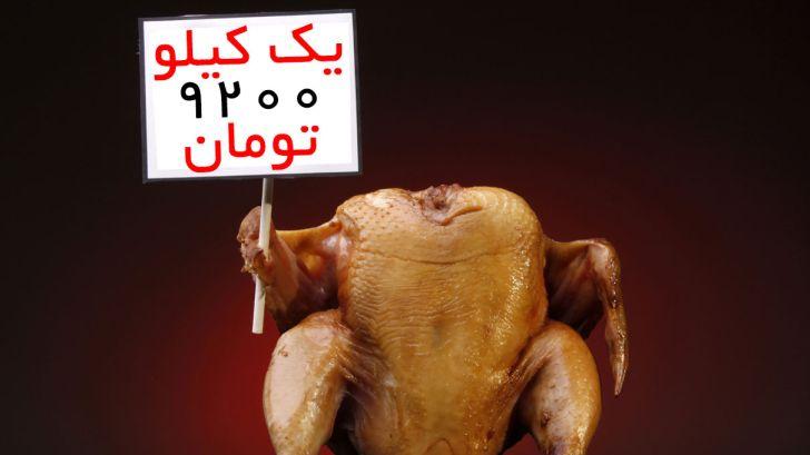 قیمت-مرغ-درب-کشتارگاه-٩٢٥٠-تومان
