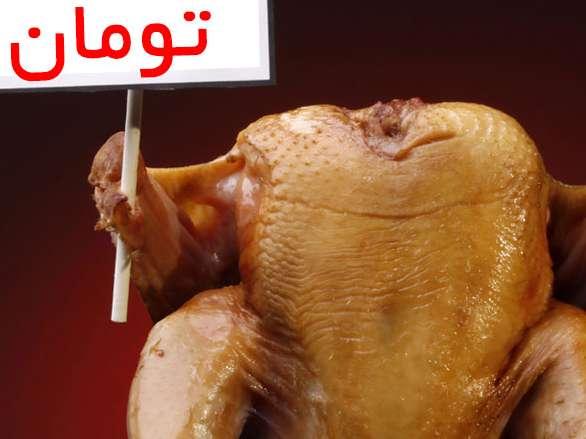 قیمت مرغ درب کشتارگاه ٩٢٥٠ تومان