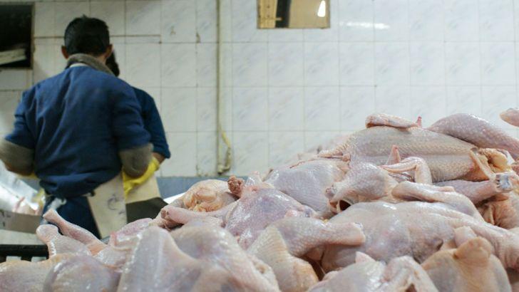 قیمت مرغ از ۱۰ هزار تومان عبور کرد