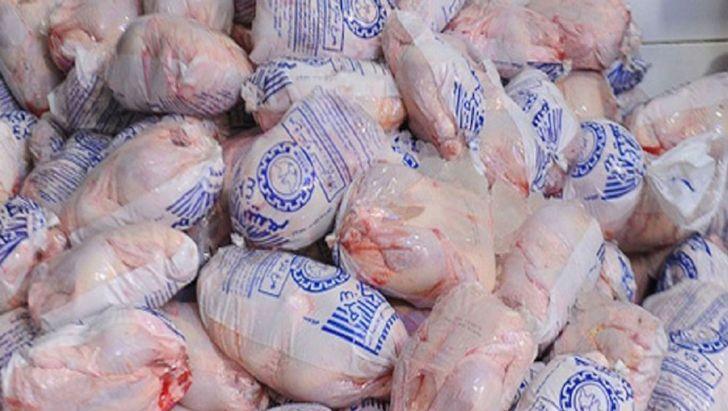 توزیع مرغ منجمد به منظور تنظیم بازار