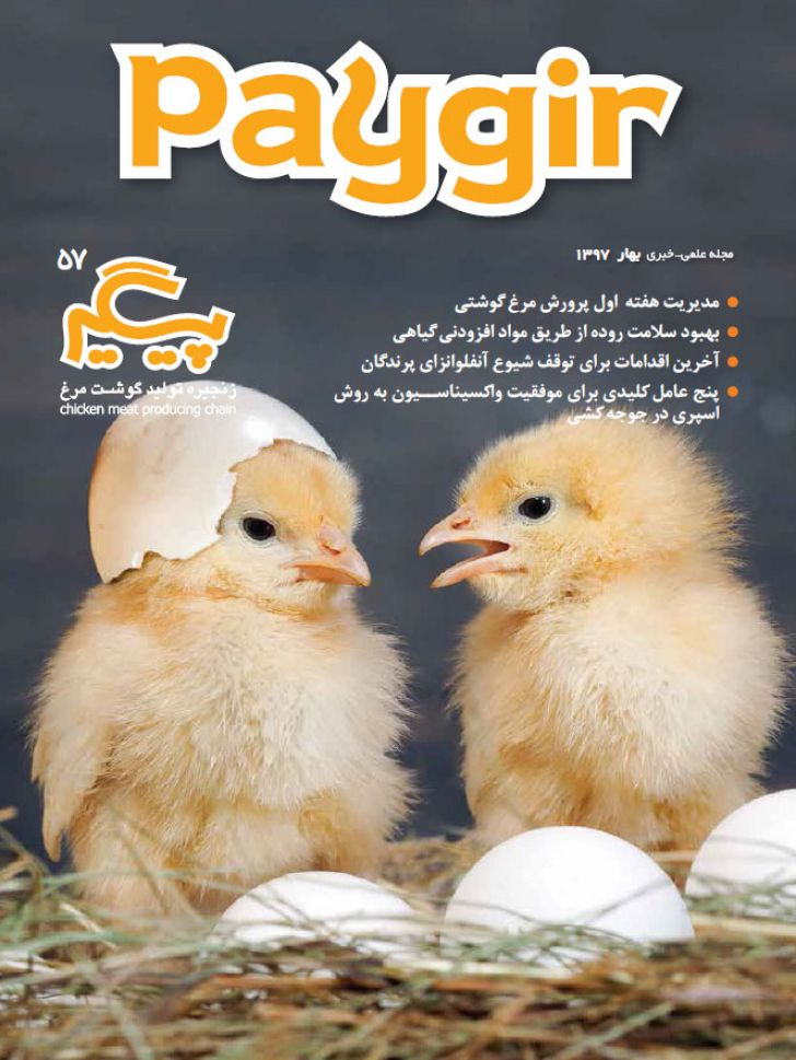 دانلود مجله پیگیر - شماره 57