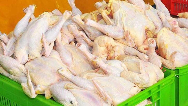 کاهش قیمت مرغ به مرز کیلویی ۸هزار تومان