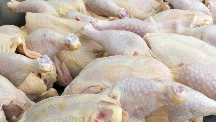 لزوم برنامه ریزی صادرات گوشت مرغ برای سمنانی ها