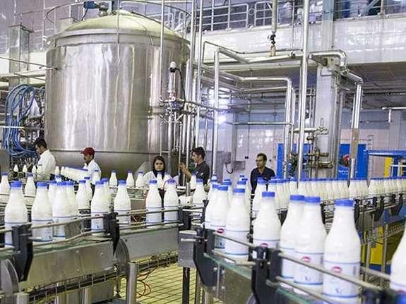 حمایت دولت از افزایش نرخ شیرخام
