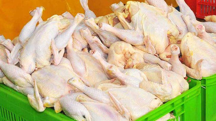 افزون بر 2 هزار تن گوشت مرغ به افغانستان صادر شد