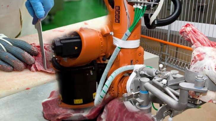 جایگزینی انسان با ربات در کارخانه های تولید و فراوری گوشت
