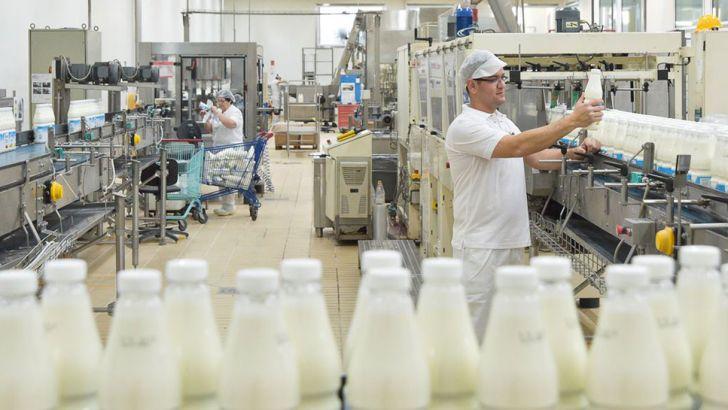 تولید شیر کشور روزانه 4 میلیون لیتر کاهش یافته است