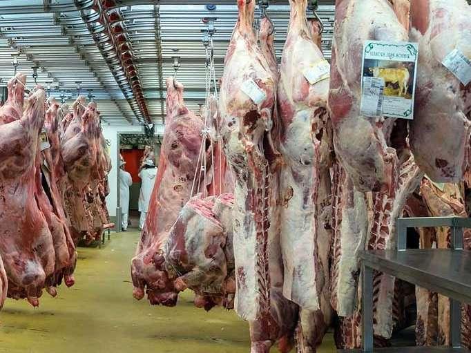واردات گوشت از استرالیا برای تامین نیاز بازار خراسان رضوی