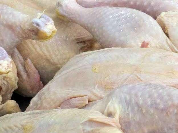 خودکفایی 57 درصدی سیستان و بلوچستان در تولید گوشت مرغ