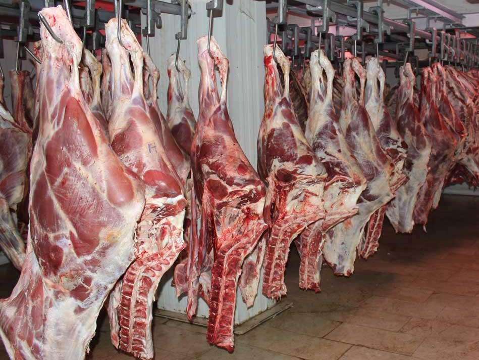 ممنوعیت مصرف گوشت قرمز فاقد لیبل دامپزشکی در قزوین