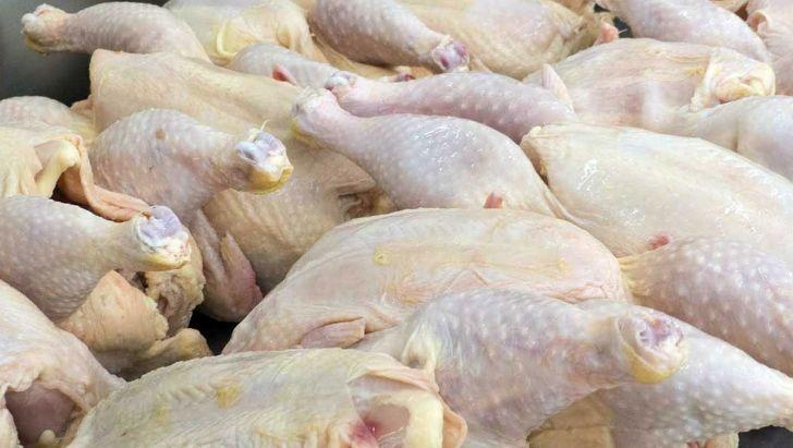 تولید مرغ، بیش از نیاز کشور است