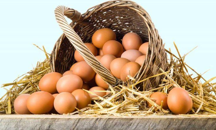 تاثیر تبلیغات بر سرانه مصرف تخم مرغ