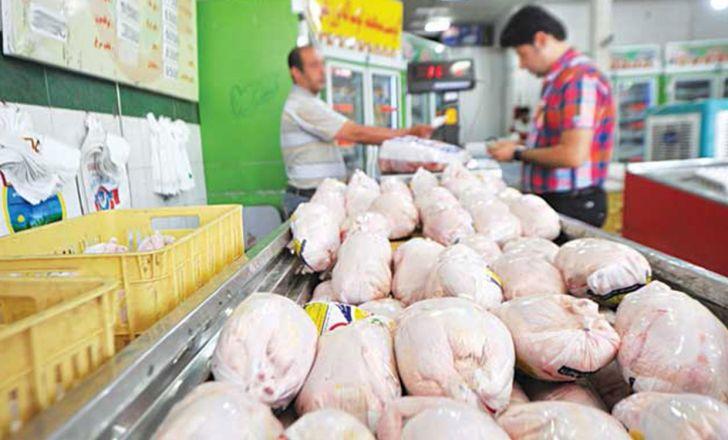 ادامه روند نزولی نرخ مرغ در بازار