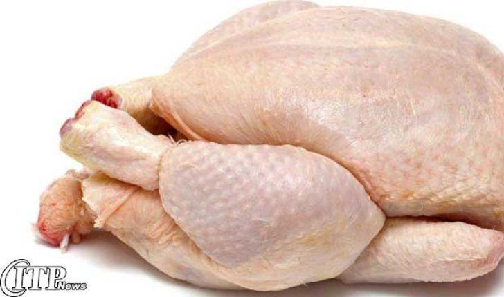 محدودیت صادرات مرغ به افغانستان برداشته شد