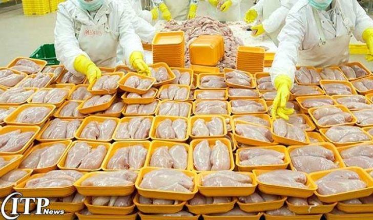 خراسان جنوبی در صادرات مرغ به افغانستان موفق عمل نکرده است
