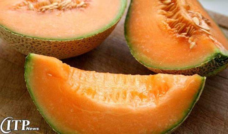 معرفی مکمل خوراک آنتی اکسیدان با پایۀ عصارۀ طالبی