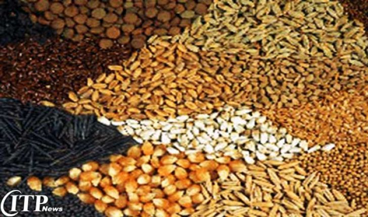 تولید بیش از 46 هزار تن خوراک آماده دام در خراسان جنوبی