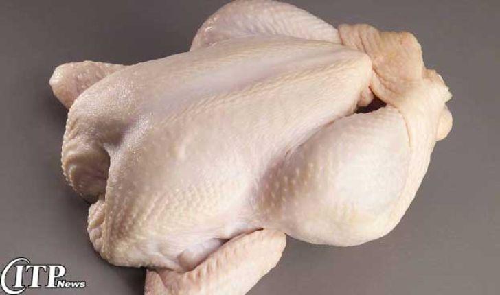 اتحادیه مرغداران: هیچ هورمونی در مرغداری های کشور استفاده نمی شود