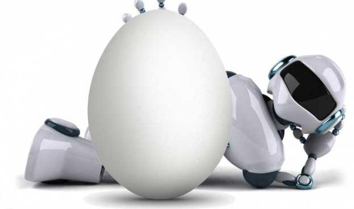 به لطف ربات ها حتی یک تخم مرغ در بستر نخواهد ماند