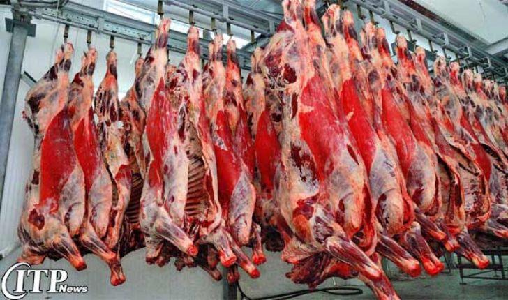 امسال تولید گوشت قرمز توسط عشایر گلستان 10 درصد افزایش می یابد