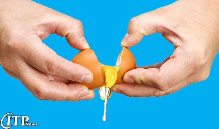 تخم مرغ یک نعمت مطمئن، باورنکردنی و ارزان