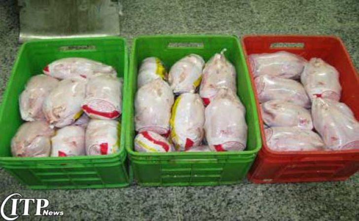توزیع مرغ منجمد ۴۵۰۰ تومانی در کردستان