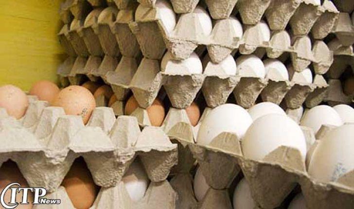 بیش از 2 تن تخم مرغ قاچاق در شاهرود توقیف شد