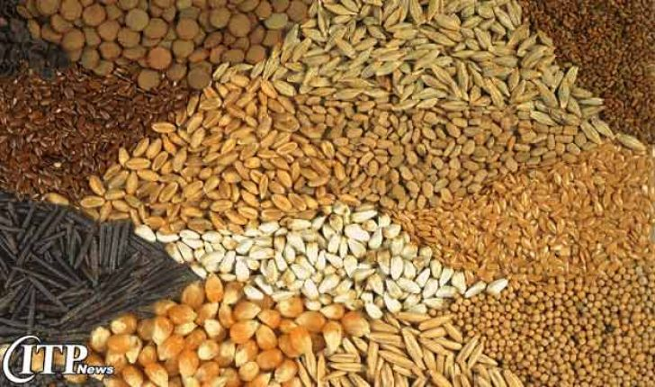 پایش بهداشتی کارخانجات تولید خوراک دام در قزوین آغاز شد