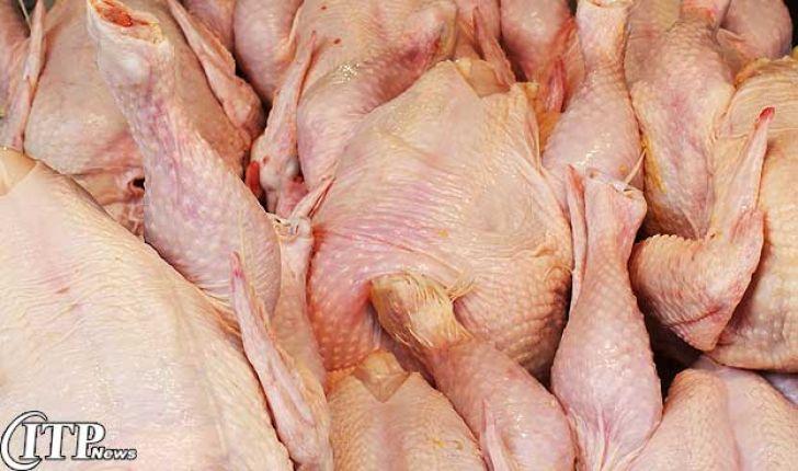 کمپانی تولید مرغ گوشتی اندونزی Pronic تولیدات گوشت مرغ خود را تا 3 برابر افزایش می دهد