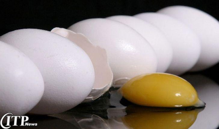 تخم مرغ، هنوز غافلگیری هایی در چنته دارد