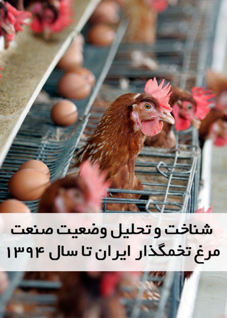 شناخت و تحلیل وضعیت صنعت مرغ تخمگذار ایران تا سال 1394