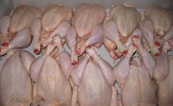 افزایش تولید گوشت مرغ در چهارمحال و بختیاری
