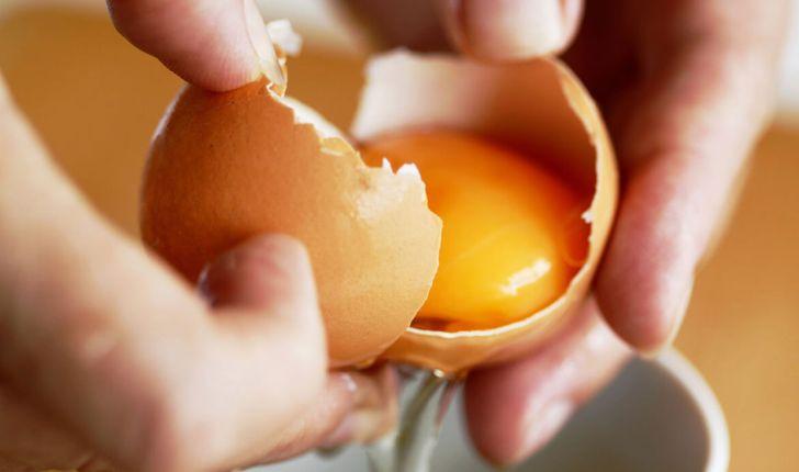 مقایسه تاثیر دانه کتان و گلرنگ بر ترکیب اسیدهای چرب زرده تخم مرغ و پاسخ تیتر آنتی بادی مرغان تخم گذار