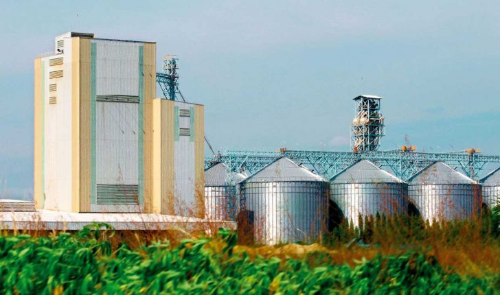 صدور پروانه ساخت برای ۵۴ محصول در کارخانجات خوراک دام قزوین