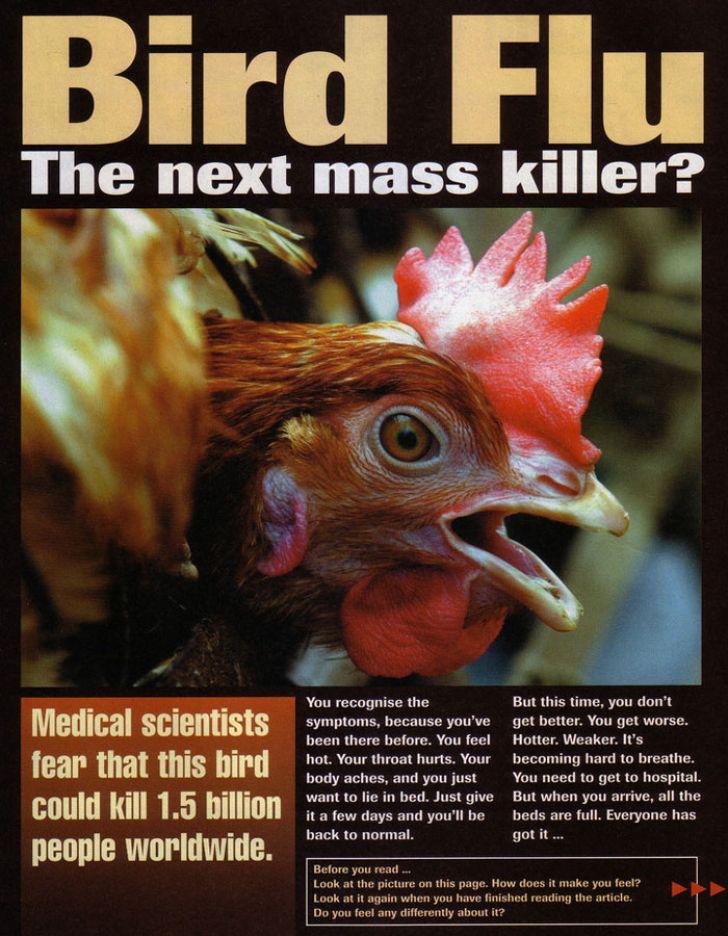 آنفلوانزای فوق حاد پرندگان و راه های مبارزه آن