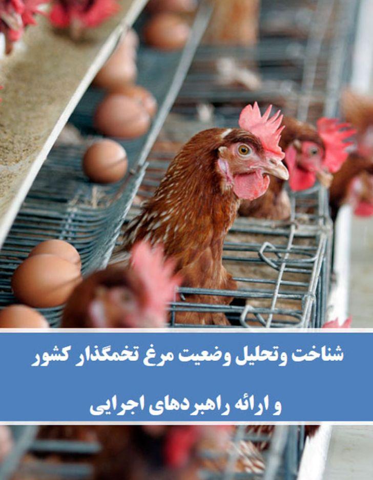 شناخت وتحلیل وضعیت مرغ تخمگذار کشور و ارائه راهبردهای اجرایی