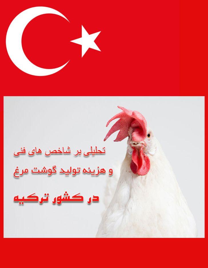 تحلیلی بر شاخص ها و هزینه تولید گوشت مرغ  ترکیه