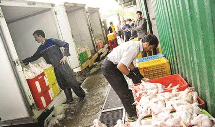روند کاهشی قیمت مرغ و ماهی ادامه خواهد داشت