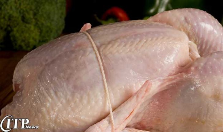 دولت عراق بر واردات مرغ ایرانی عوارض بست